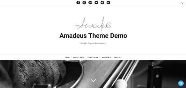 Amadeus WordPress šablóna zadarmo