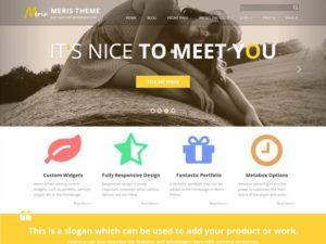 Meris WordPress šablóna zadarmo